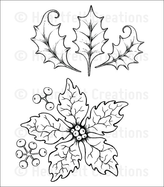 Poinsettia Cartoon Drawings