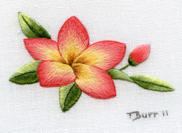 long stitch short stitch embroidery | MONDAY 9TH APRIL – Frangipani Flower. One day class.