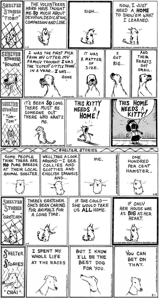 Into Comic strip mutts archives