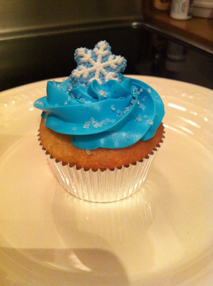Frozen cupcakes for my twin daughters  birthday.