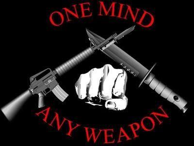 Marine Martial Arts Training - Marine Martial Arts ...