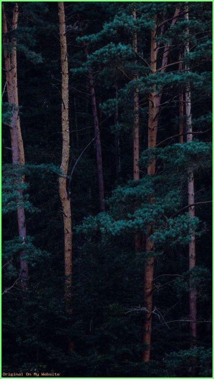 Brown Wallpaper HD Background Texture