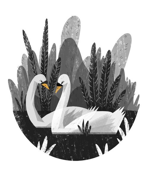 spot illustration, animal, bird, swan, floral, naive.