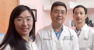 Tutta salute: Il digiuno intermittente uccide le cellule tumorali della leucemia infantile