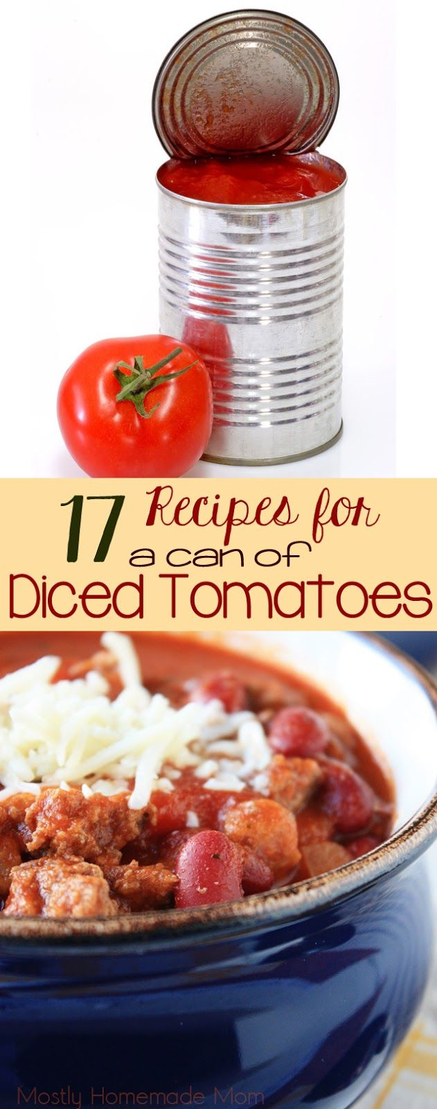 17 Recipes for a Can of Diced Tomatoes - Got some canned tomatoes hanging out in your pantry?? You NEED this list!