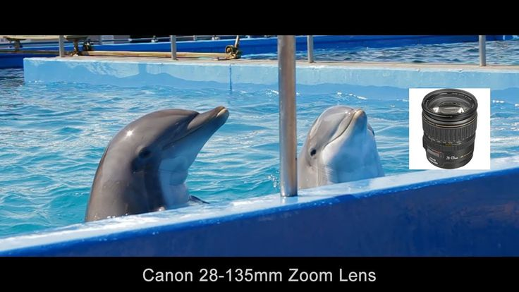 How I Use The Canon Ef 28 135mm F 3 5 5 6 Is Lens Canon Ef Canon Photo