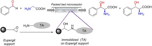 Flow synthesis of phenylserine using threonine aldolase immobilized on Eupergit support