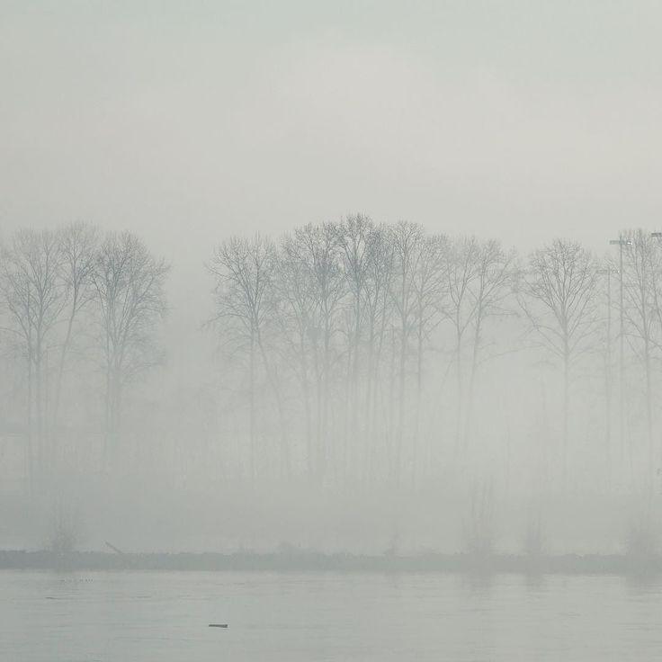 Eeerily mist foggy day on the river! . . #vancityhype #getoutside #discoverglobe #beautifuldestinations #socialrealtor #socialmedia #yvrre #realtor in #yaletown #vancity #vancouverrealestate #theevlist #wp #linkedin #instahub #instagood #love #engelvolkers #fraser #river #bc #canada