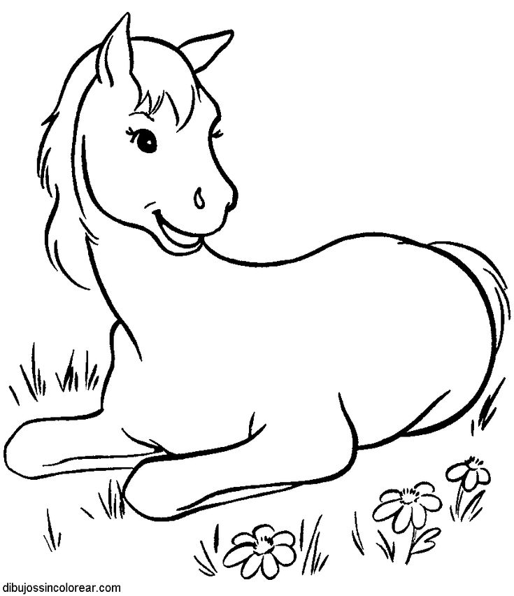 horse coloring page 010 these free printable horse coloring pages of horses are fun for kids - Horses Printable Coloring Pages