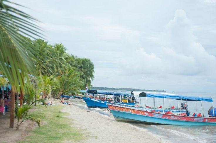 Visiter le Panama, une destination à ne pas manquer (Detour Local) -> Playa Estrella, Bocas del Toro. Une journée de farniente dans un endroit paradisiaque www.detourlocal.com/que-faire-panama-destination/