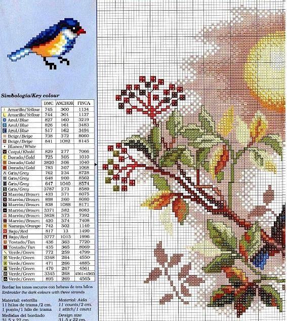 1/2 ---pájaros en la rama