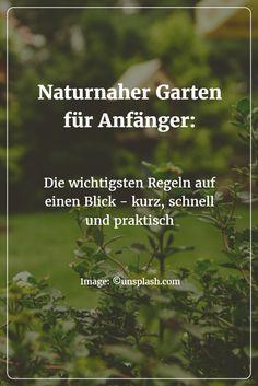 Was gibt es beim Gestalten und Pflegen eines naturnahen Gartens zu beachten? Wie wird ein naturnaher Garten angelegt? Was ist besonders wichtig? Wie lassen sich erste Schritte planen?