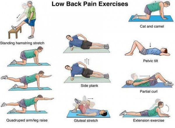 Top 10 Exercises to Strengthen Your Back and Reduce Back Pain | Trending Stylist