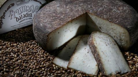 En el norte de Italia se funden dos tradiciones: La de la cerveza y la del queso. El resultado es el Formaggio alla Birra, un queso artesanal aromático y profundo que se obtiene al mezclar directamente suero de leche y cerveza.
