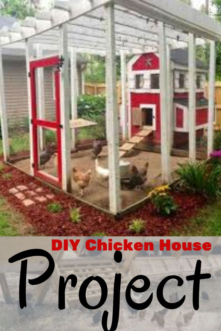 Diy Chicken House Project Diy Chicken House Project Looking For Woodworking Plans Its Now A Woodworking Plans Diy Simple Woodworking Plans Diy House Projects Backyard chicken house designs