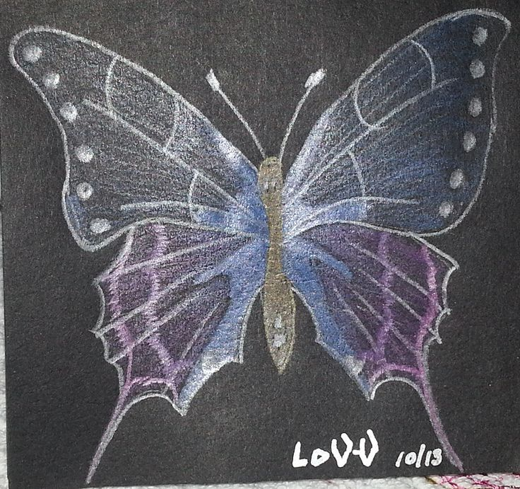 A drawing of a butterfly done in metallic pencil