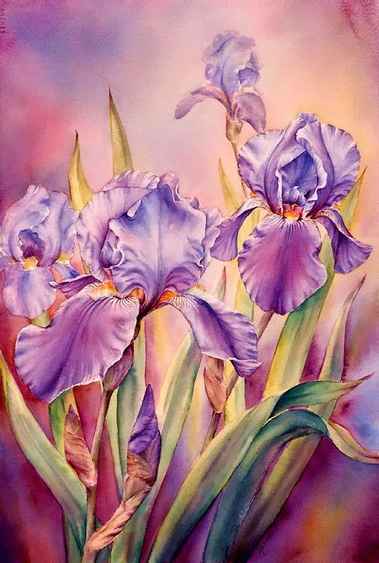 свои рисуем цветы акварелью картинки дисках минске, заказать