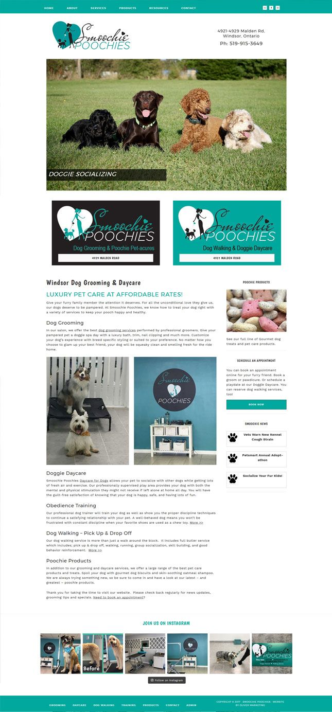 Smoochie Poochies Doggie Daycare in Windsor, Ontario.