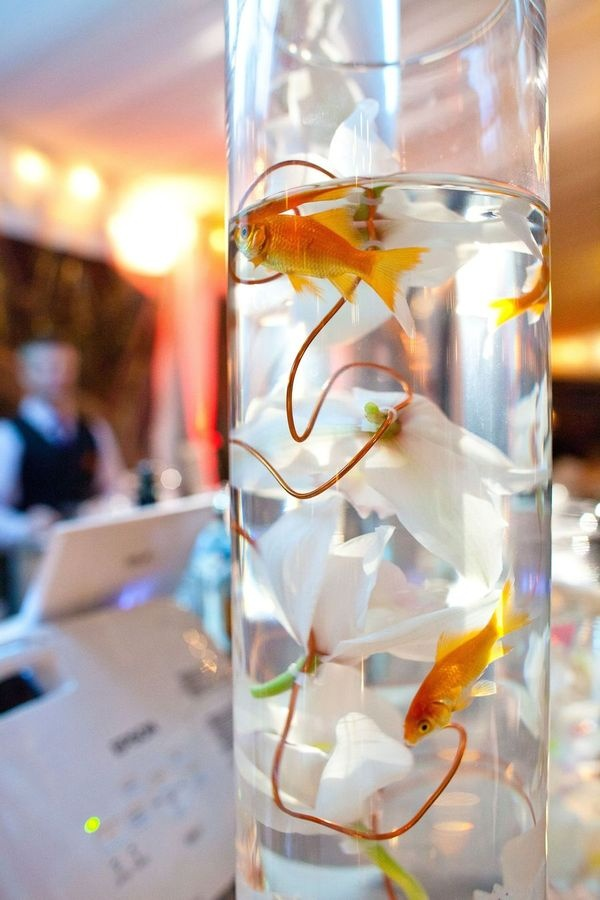 Best 25 goldfish centerpiece ideas on pinterest fish for Fish wedding centerpieces