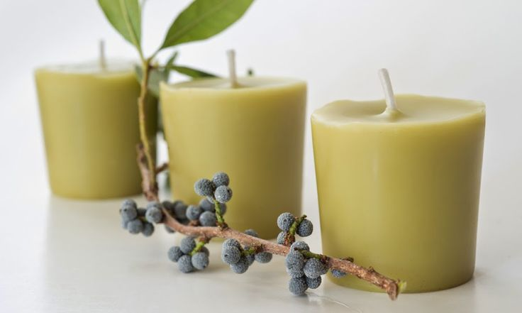 The 3 Foragers: Foraging for Wild, Natural, Organic Food: Making Bayberry Candles