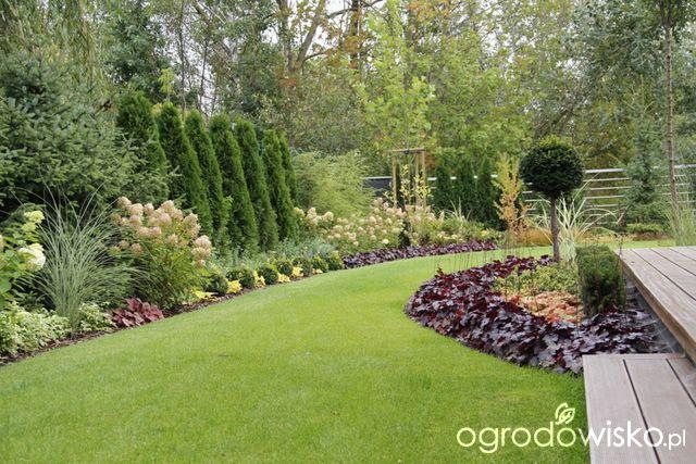 Ogród z lustrem - strona 188 - Forum ogrodnicze - Ogrodowisko