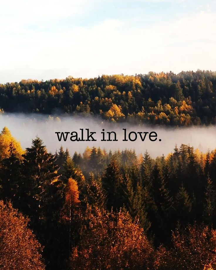 """""""Therefore be imitators of God as beloved children; and walk in love just as Christ also loved you and gave Himself up for us an offering and a sacrifice to God as a fragrant aroma."""" - Ephesians 5:1-2 WALK. IN. LOVE. A reminder to imitate God by loving others every chance we get - no strings attached. Are you walking in love? Design by @tjmousetis #VRSLY #madewithVRSLY #VRSLYdevotional"""