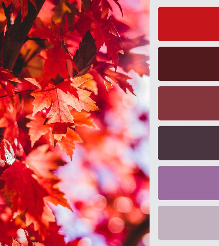 BRICK RED color palette