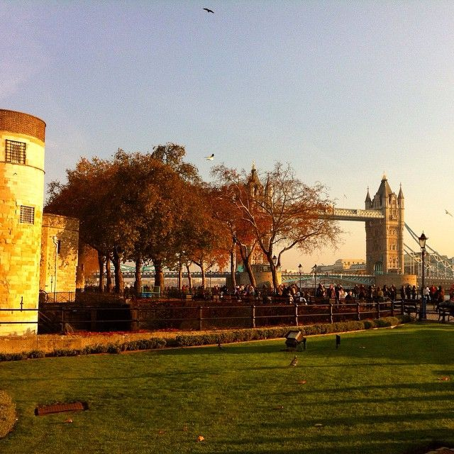 #lovely #winters #sun on #Tower #Bridge #TowerofLondon Get the #Kooky #London #App http://bit.ly/11XgicP #ig_London #igLondon #London_only #UK #England #English #GreatBritain #British #quirky #odd #weird #photoftheday #photography #picoftheday #igerslondon #londonpop #lovelondon #timeoutlondon #instalondon #londonslovinit #mylondon #Padgram