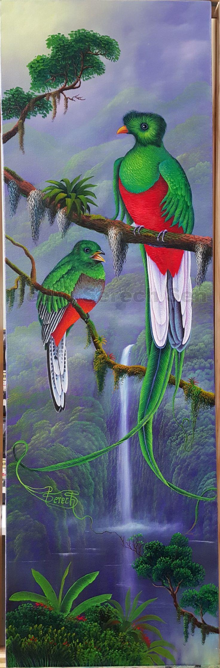 Es uno de mis obras al oleo el ave sagrado de los mayas ((El Quetzal))