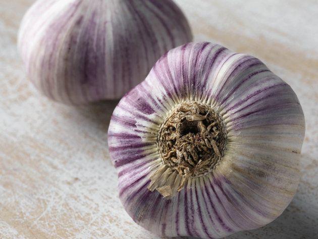 GNLD NEOLIFE GOLDEN products                           FRANCESCA MODUGNO distributor: L'aglio è buono e fa benissimo, ma come liberarsi ...