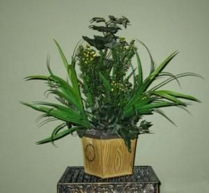 """The Artificial PVC Leucodendron Plant looks like it could be a herb growing on a windowsill.  Comes potted in a round Metal Decorative Container with 2 Black rings on the sides.  Great for grouping 3 together on a window sill or can also be placed in your extended outdoor entertaining area.  Dimensions are:    Great for Gift Giving.  Height=12""""  Width=10""""  Depth=10"""""""