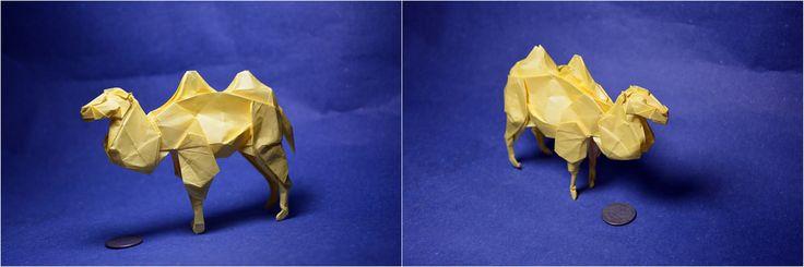 Bactrian Camel Shuki Kat by Origami Fan @Daniel
