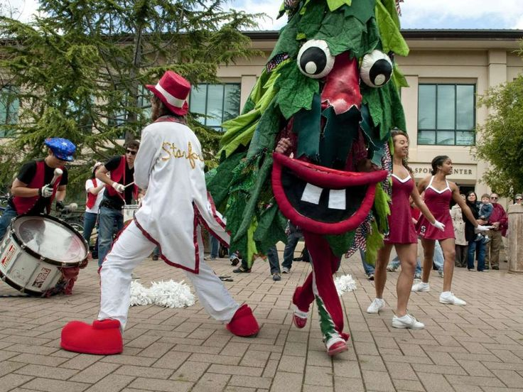 Stanford University – Stanford Tree These 30 Bizarre Sports Mascots Will Definitely Not Entertain You • Page 2 of 6 • BoredBug