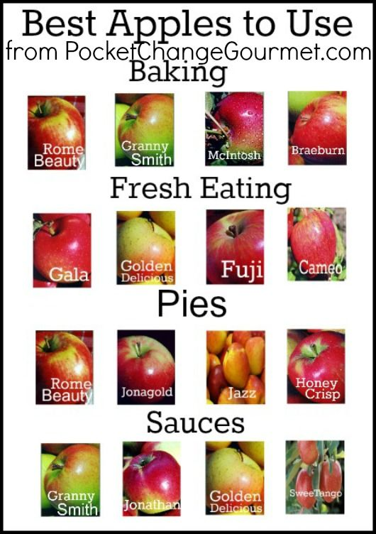 Guide to Apples and their Uses!
