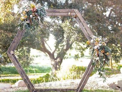 Hexagon Wedding Arch Rental Backyard Wedding Decorations