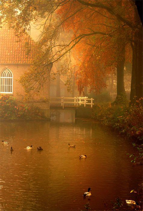 Photo: Roos Gast | Een dromerige mistige ochtend in de buurt van Fleringen #naturephotography #photography #nature #natuur #sprookjesachtig #fotografie #landschap #Nederland #mooie_foto