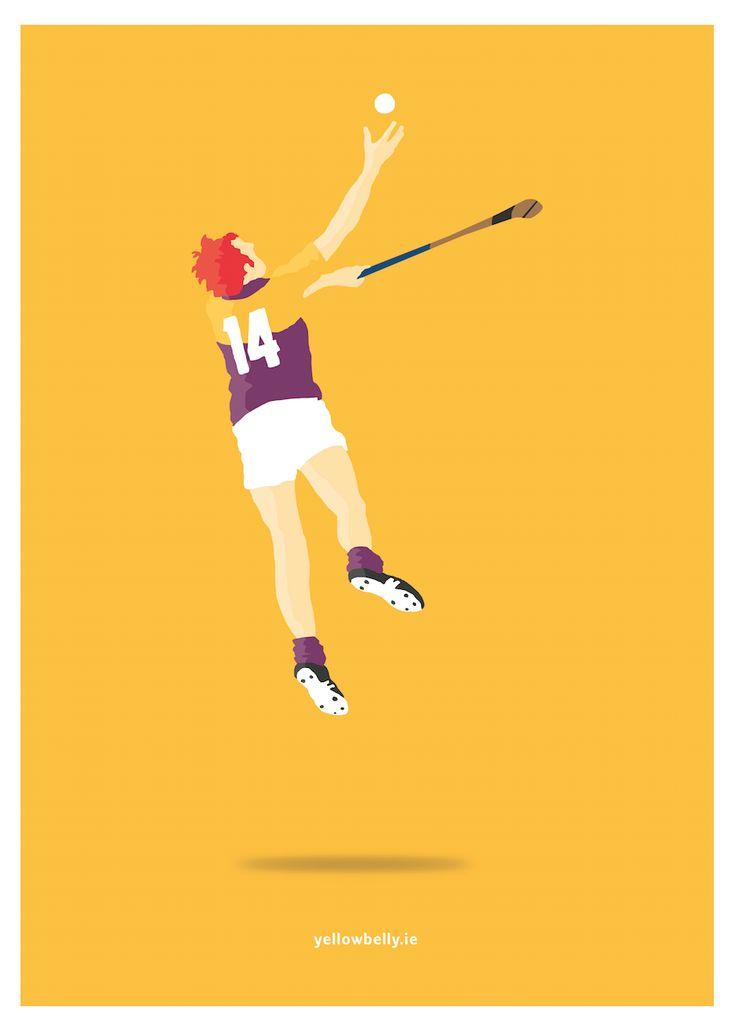 Tony Doran, Wexford, Hurling, GAA, Leinster, Ireland