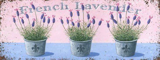 французский-лаванда- cenefa french lavender