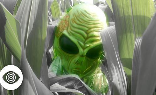 Crop Circles: Prova de que Aliens Existem e nos Visitam?