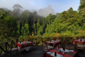 Udsigt fra restauranten på Borneo Rainforest Lodge i Danum Vallay