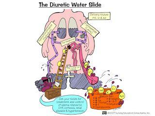 The diuretic Water Slide (Diuretic Drugs and Henle's Loop)---->Nursing School: Pharm Mnemonics