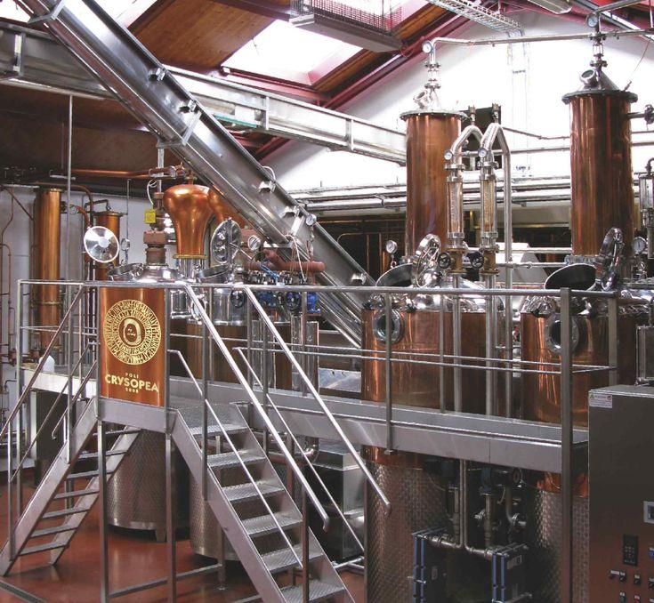 Blog Poligrappa Grappa, Distillation, Distillery