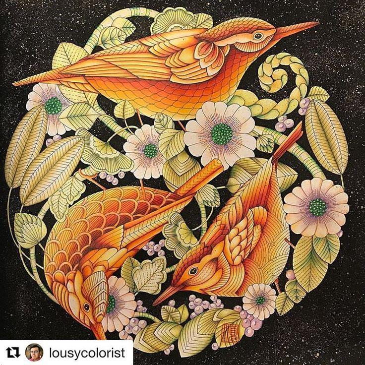 #Repost @lousycolorist (@get_repost) ・・・ Page from #beautifulbirdsandtreetoptreasurescoloringbook #b - coloring_loves