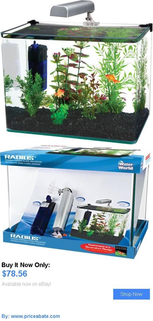 17 best ideas about 10 gallon fish tank on pinterest 1 for Buy fish tank