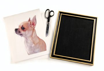 Nikki Scheel's DIY silhouette picture of your pet.: Silhouette Pictures, Pet