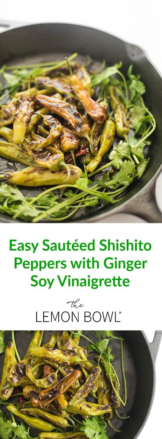 Shishito peppers are sautÃed until slightly blistered then drizzled with a ginger-soy vinaigrette to create this easy, 10-minute appetizer recipe.