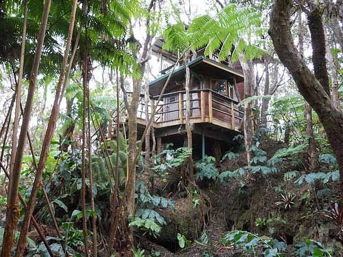 25 Beautiful Tree House Resort Ideas On Pinterest Jungle Wellness And Hotels In Et Thailand