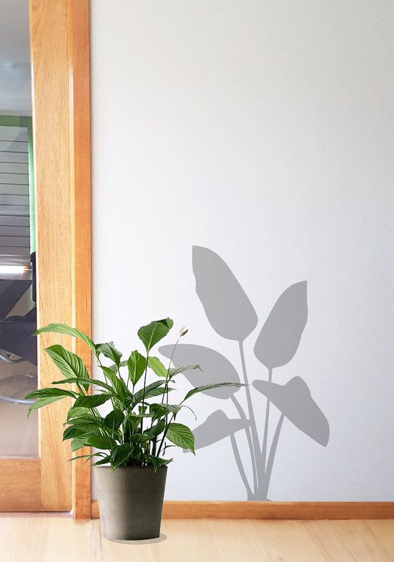 A removable and easy to apply vinyl wall decal can add dimension to your walls. Create your space, choose a grey plant to silohette to shadow