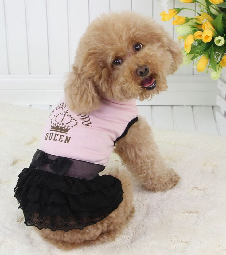 Pretty Queen Part dress! Pink and Black layered lace dress! http://edenpetz.co.uk/dogs/dogclothing/summerdresses/dogdressblacklacemedium