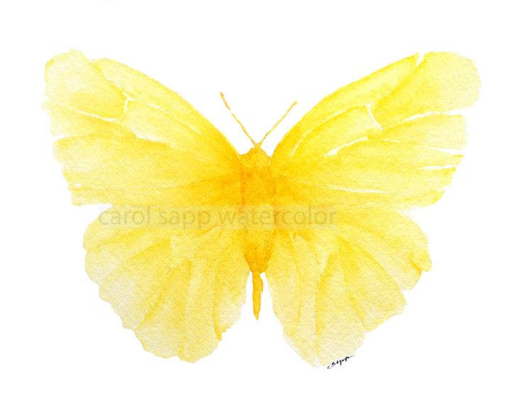 yellow watercolor butterfly - good use of single color with several shades